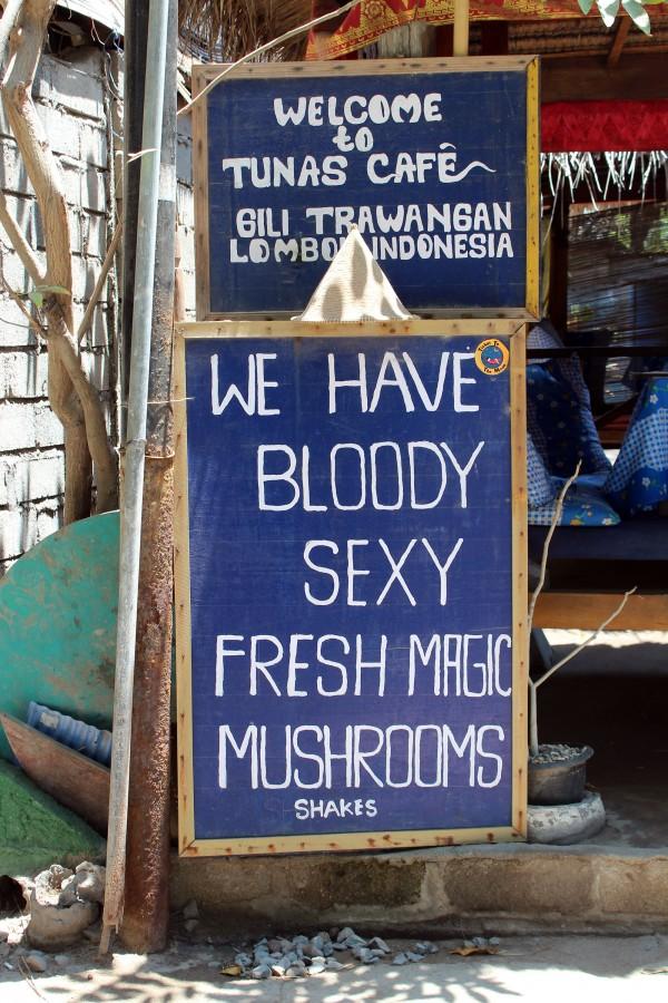 Gili champignons magiques