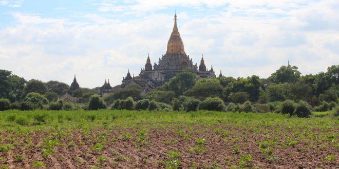 Temples visiter Bagan