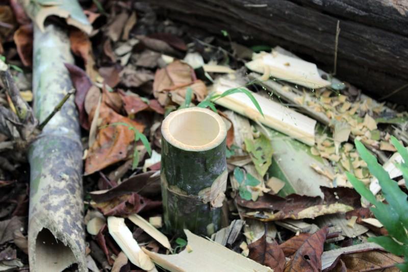trek-verre-bambou