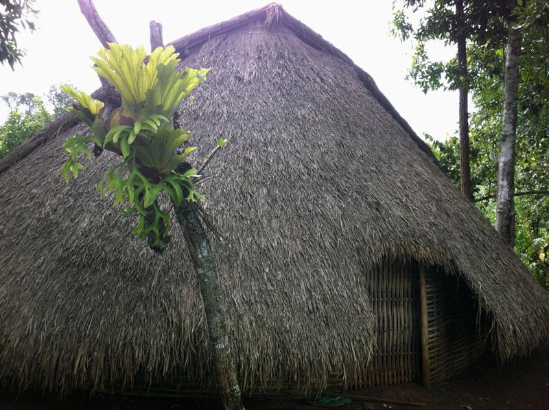 Village ethnie des Phnong