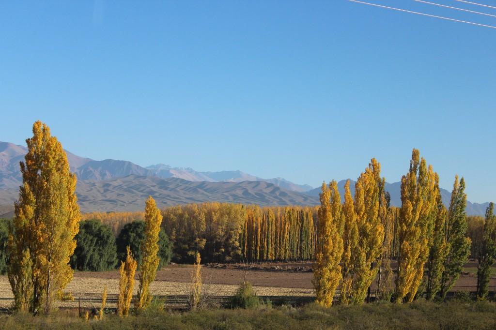 Région Mendoza