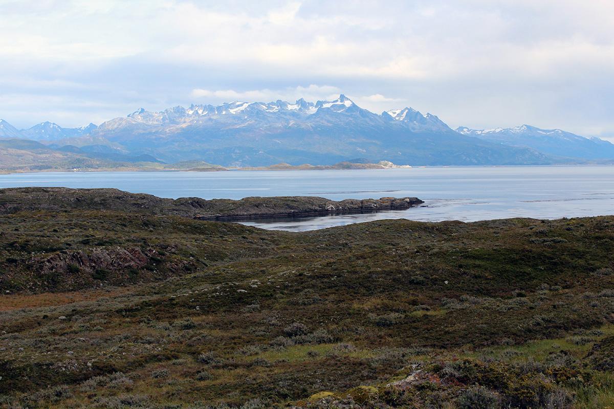 Patagonie Isla bridges