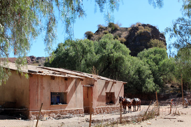 Tupiza far west bolivien