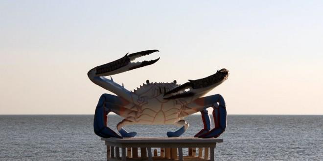 Crabe à Kep