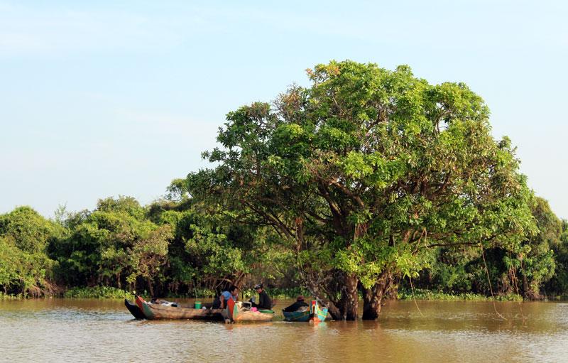 photos du lac tonle