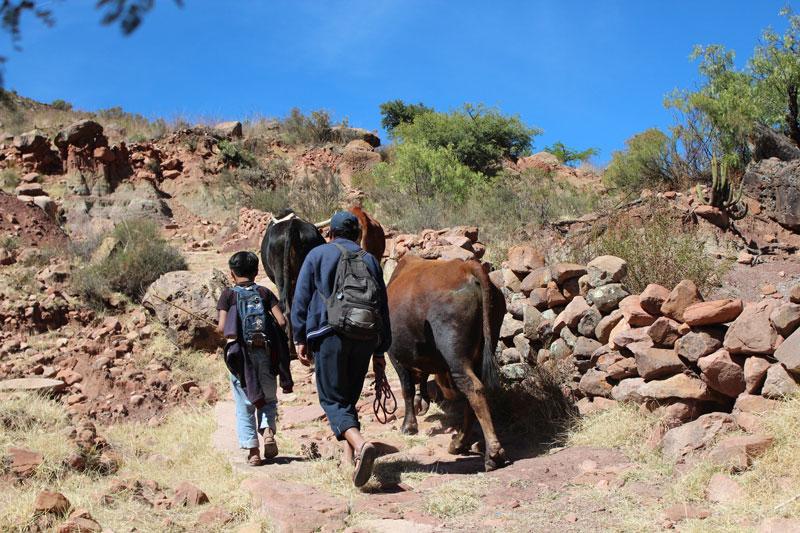 Chemin des Incas