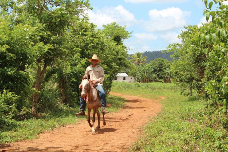 Guarjiro à cheval