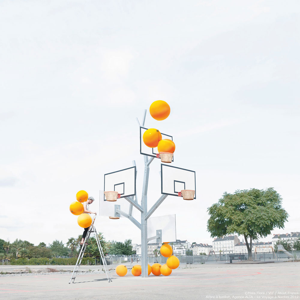 L'arbre à basket de Nantes