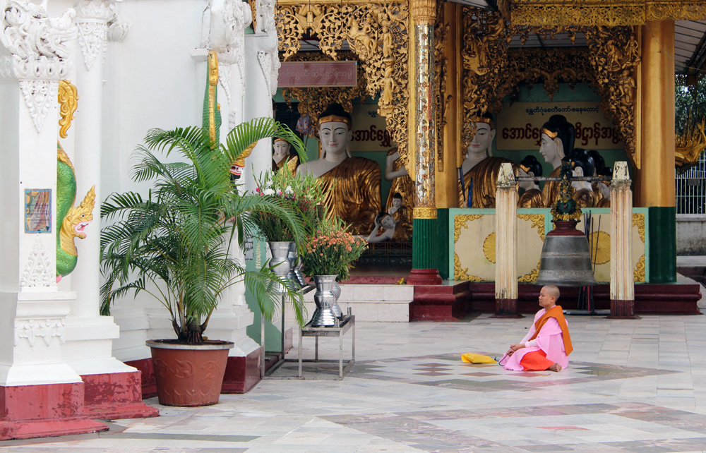 Monk pagode Shwedagon Birmanie