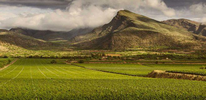 Bolivie Tarija