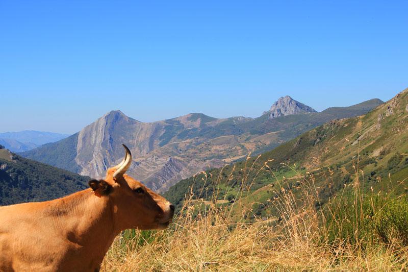 Visiter Asturires