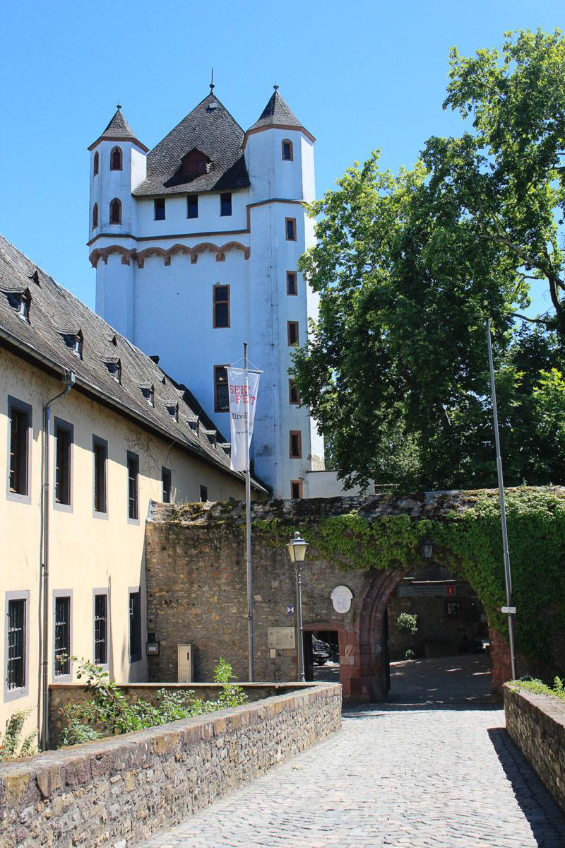 Rheingau Allemagne